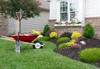 desherbant selectif pour pelouse