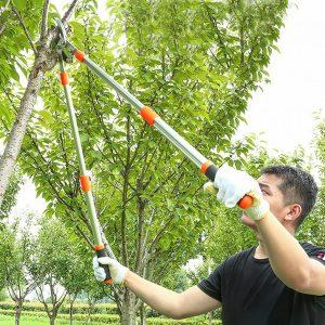 utiliser un coupe branches